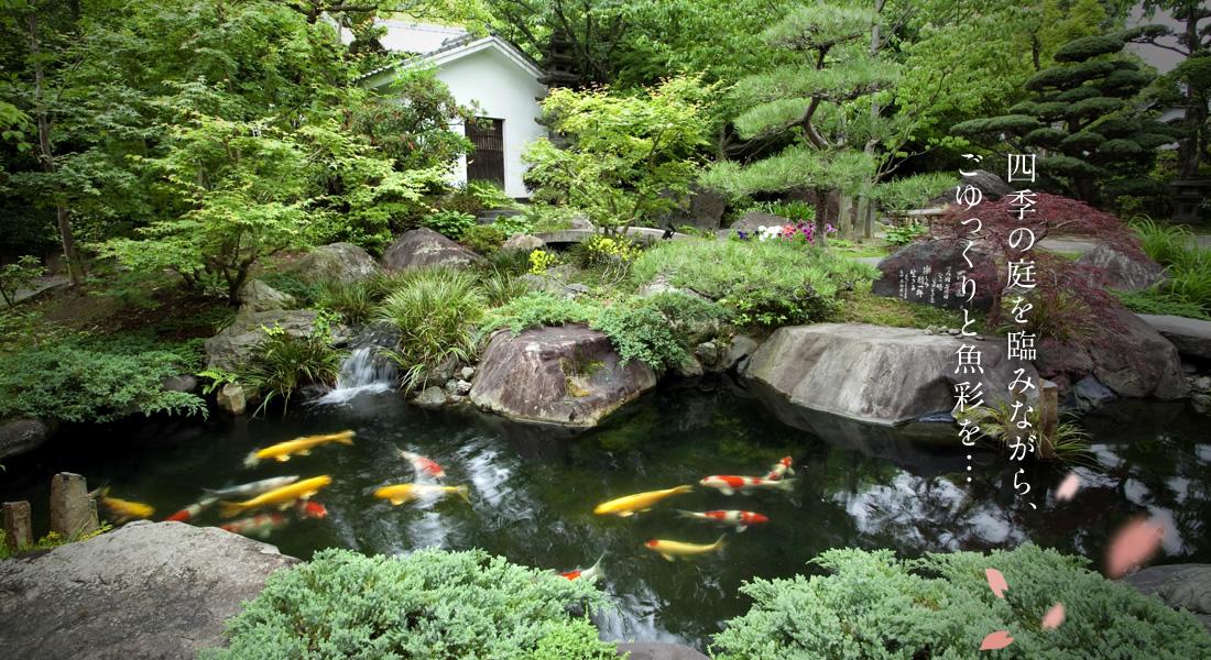 四季の庭を臨みながら、ごゆっくりと魚彩を